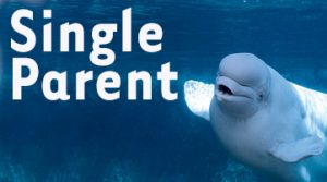 Single Parent Membership