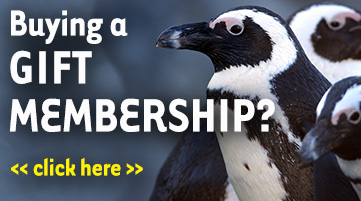 Buying a gift membership? Click here