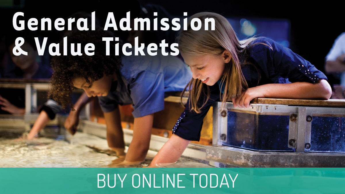 General Admission and Value Tickets