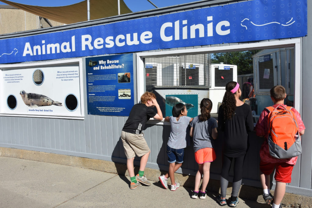 Front of Animal Rescue Clinic