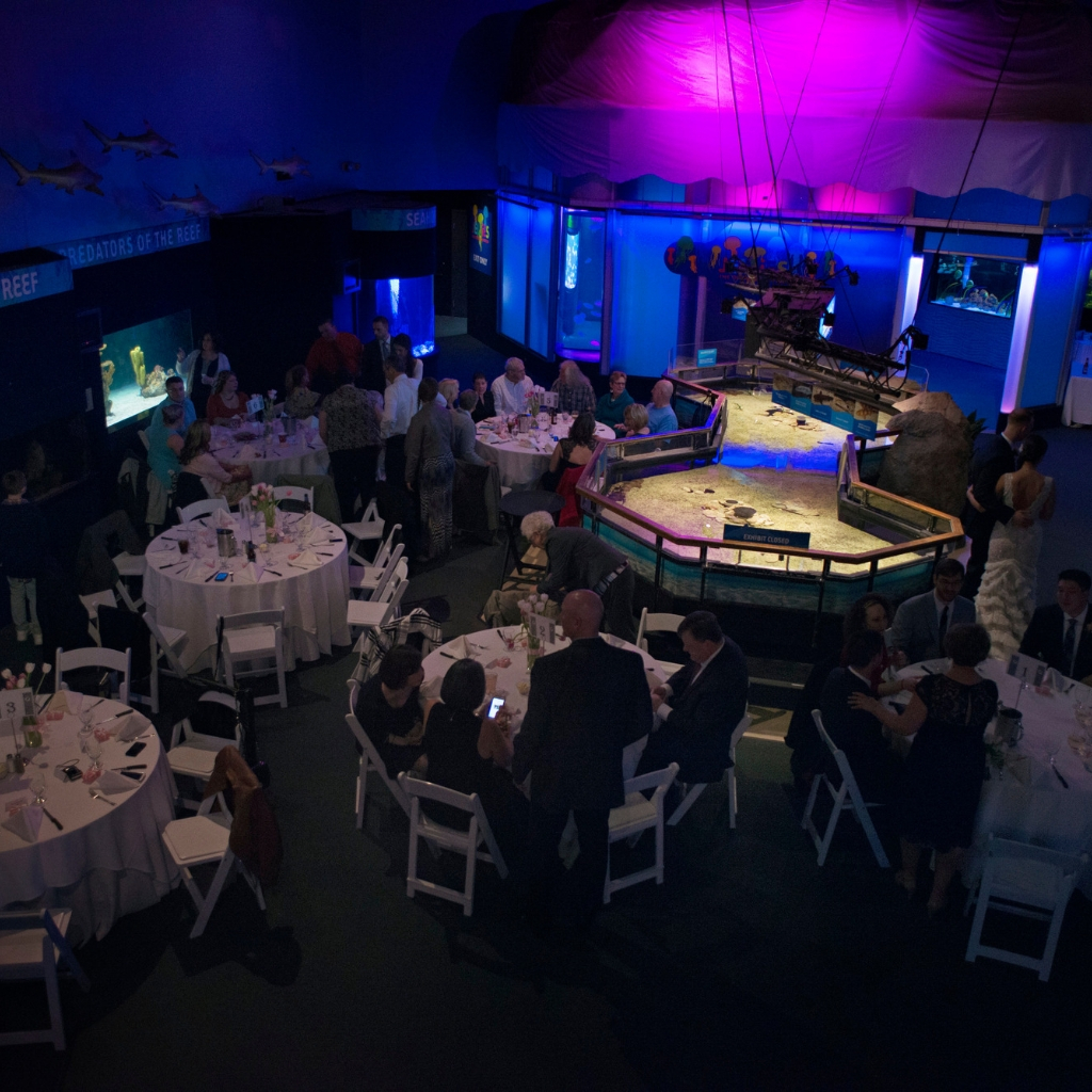 OBC Event Main Floor