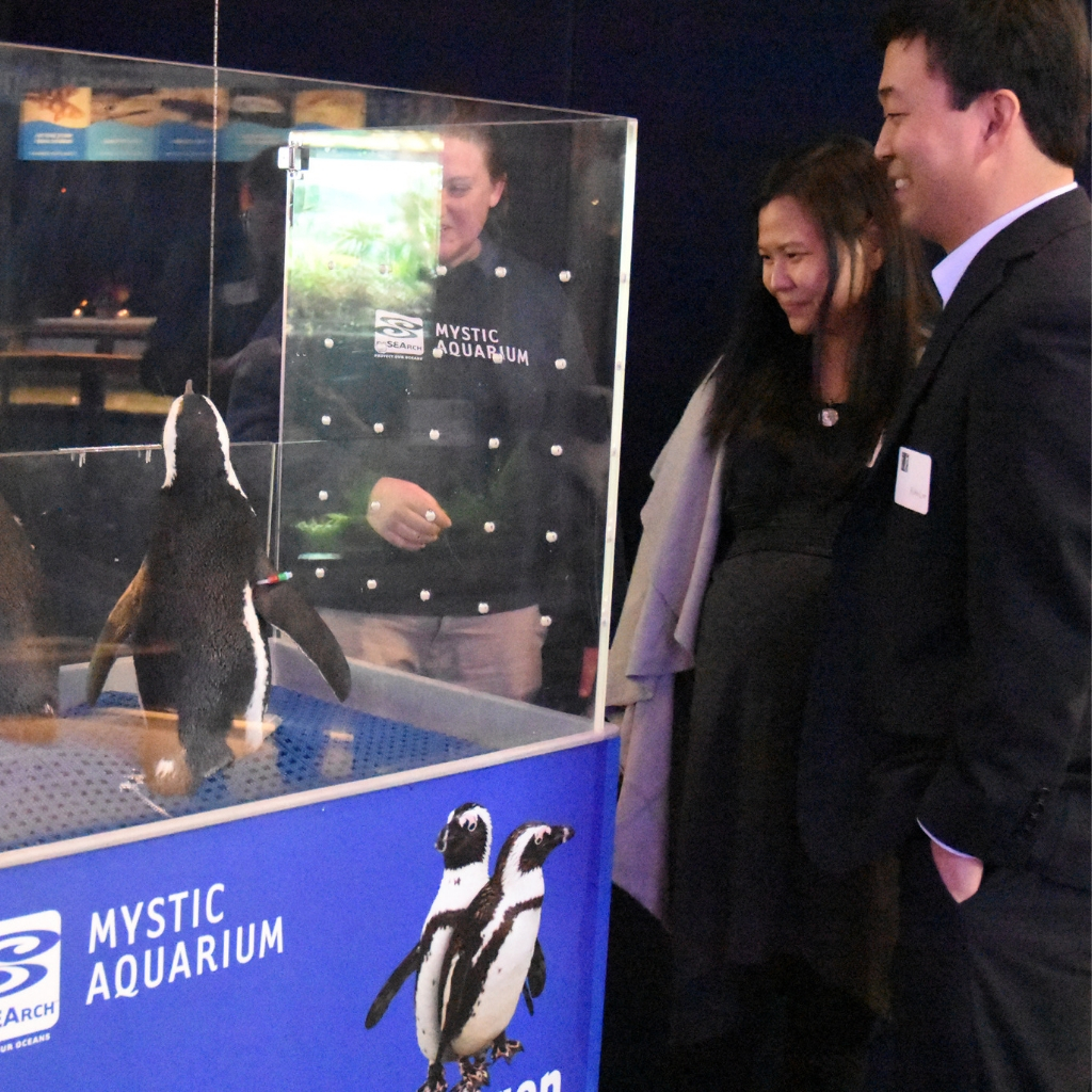 Penguins at Event
