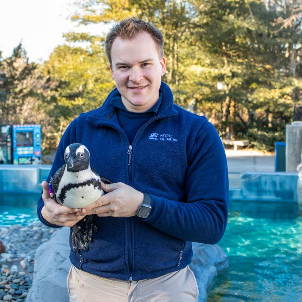 Trainer with Penguin