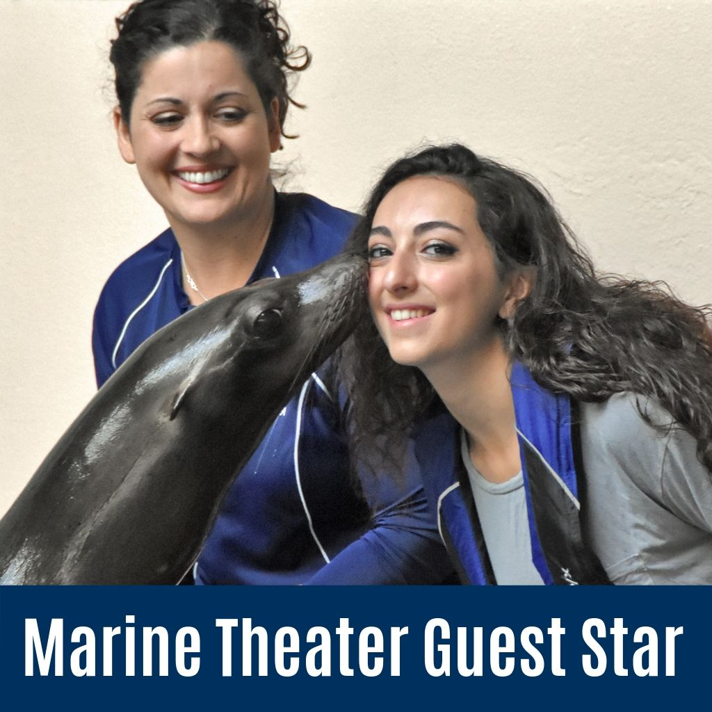 Marine Theater Guest Star