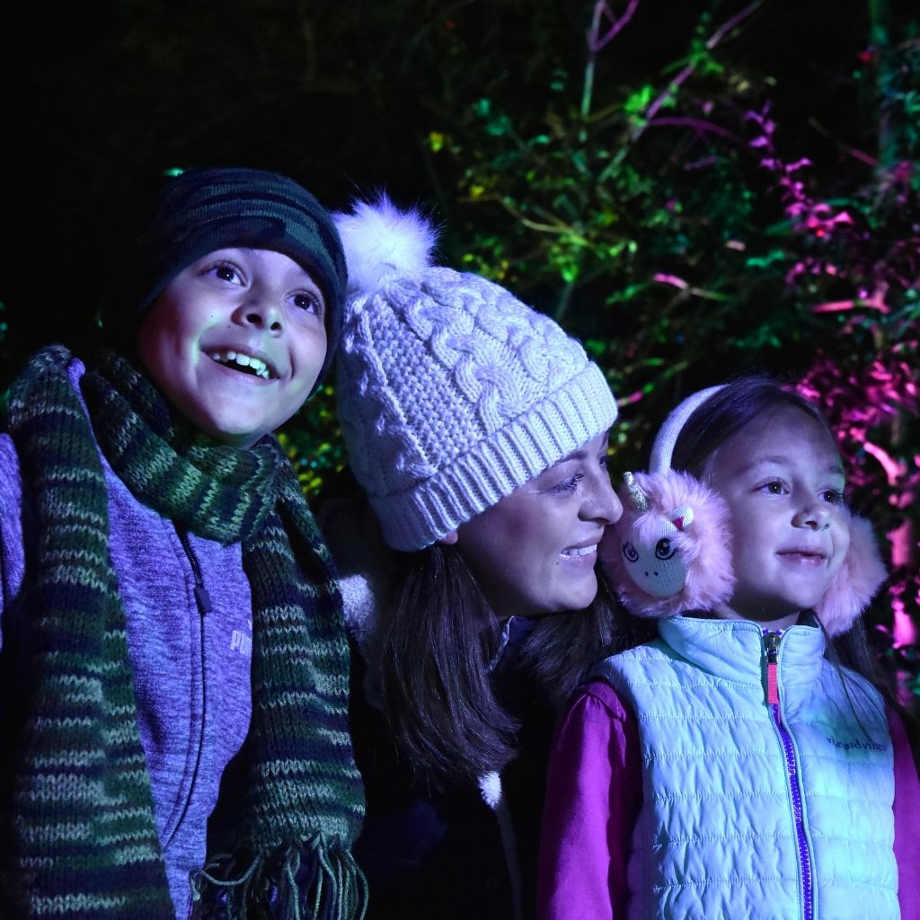 Family at Northern Lights