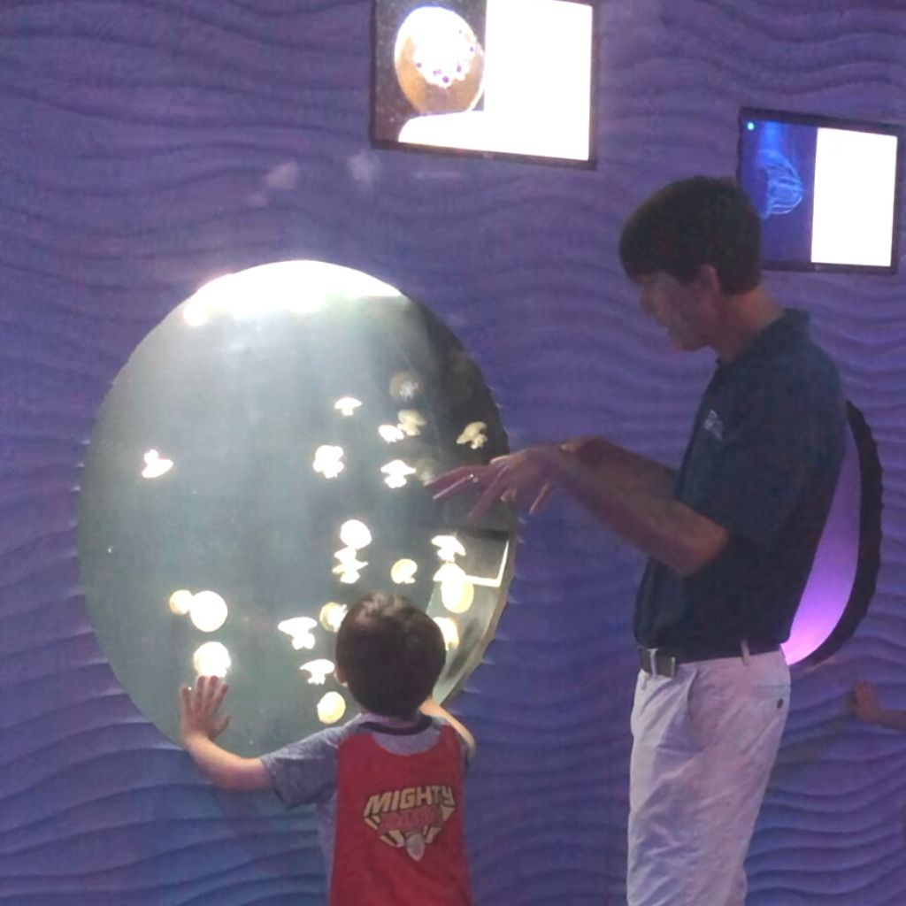 Cris educating child about jellies