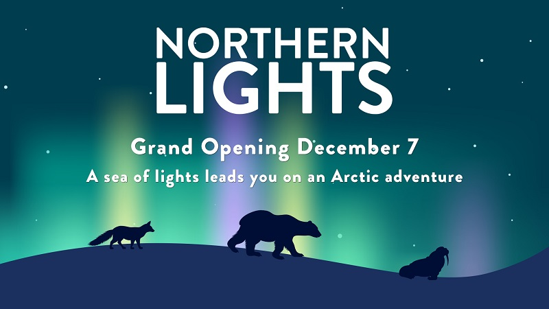Northern Lights Promo Image