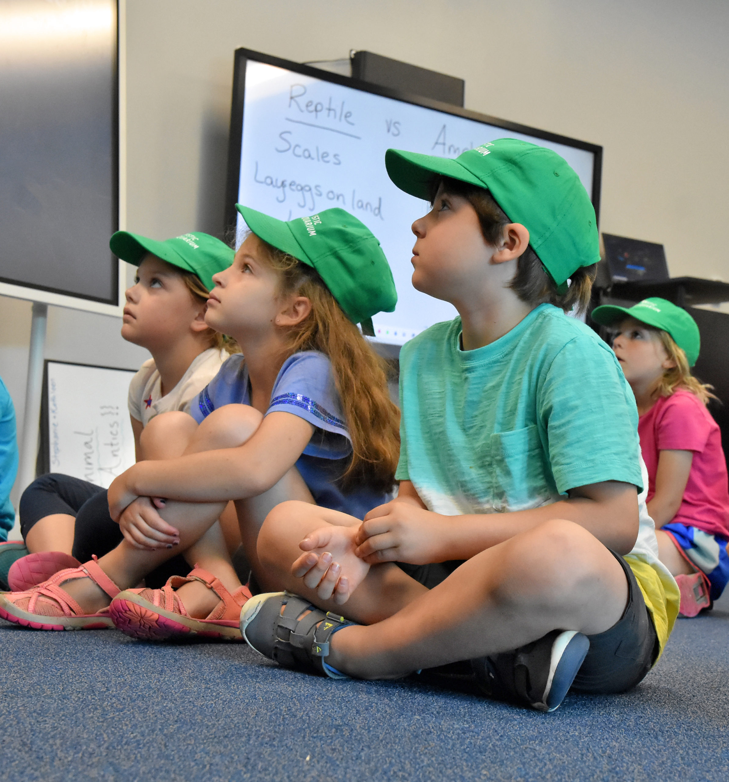 Mystic Aquarium Welcomes First Summer Campers of 2020