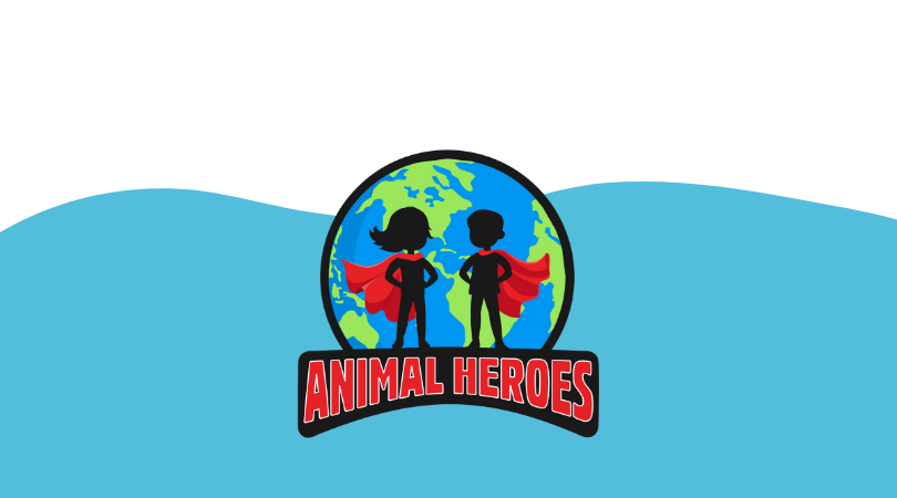 Mystic Aquarium & ARSOME Announce 'Animal Heroes' Subscription Box in Honor of #GivingTuesday