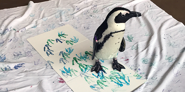 Paint with a Penguin